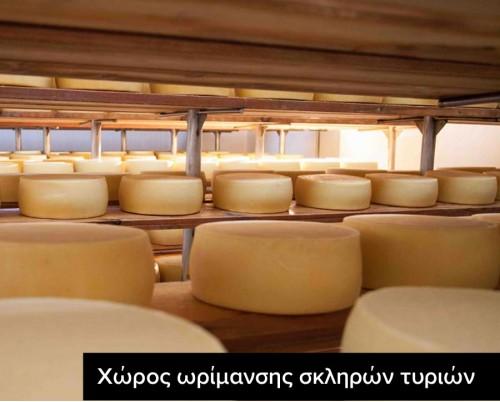 χώρος ωρίμανσης τυριού