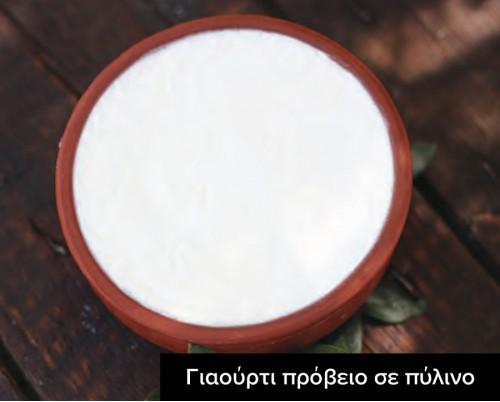 γιαούρτι πρόβειο σε πύλινο